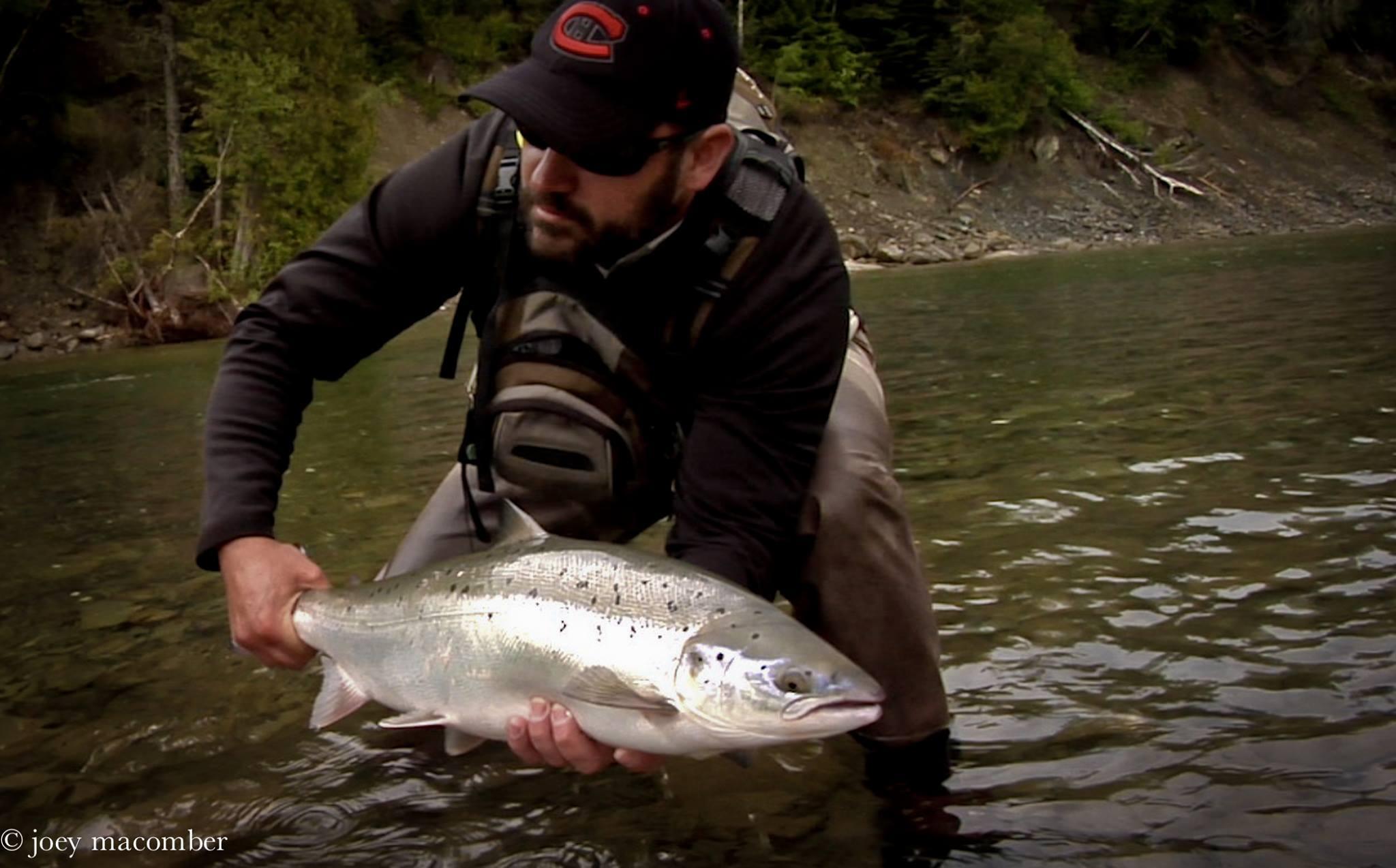 Angler preparing to release St. Jean River Atlantic Salmon