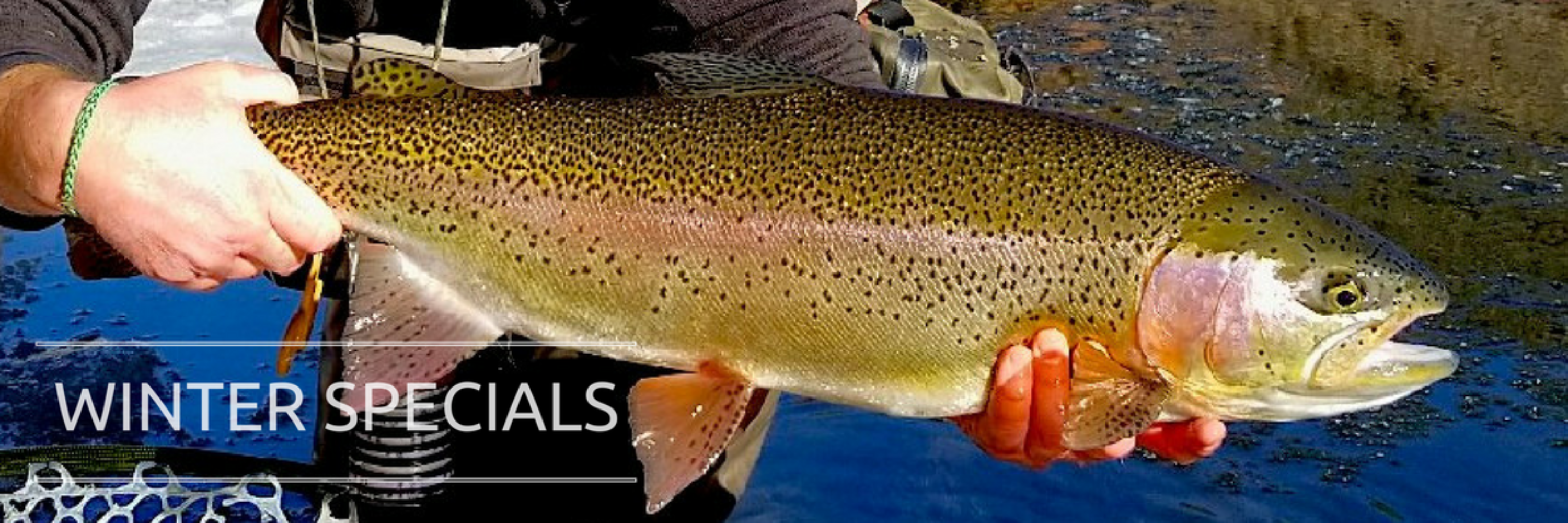 Colorado fly fishing guides vail colorado fly fishing trips for Colorado fishing trips